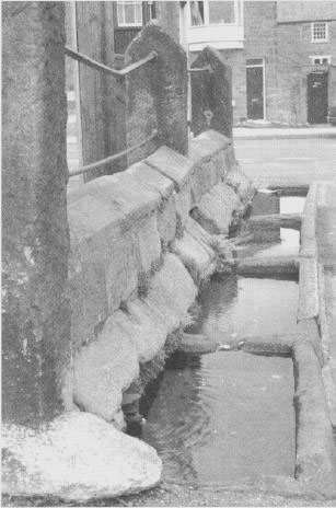 picture of market place troughs
